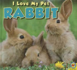 Rabbit - Aaron Carr