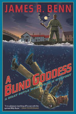 A Blind Goddess - James R. Benn