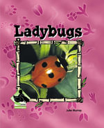 Ladybugs : Ladybugs - Julie Murray