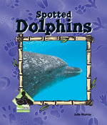 Spotted Dolphin : Spotted Dolphin - Julie Murray
