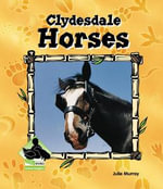 Clydesdale Horses - Julie Murray