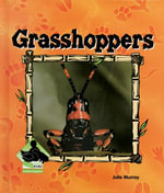 Grasshoppers eBook : Grasshoppers - Julie Murray