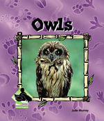 Owls eBook - Julie Murray