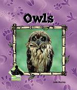Owls - Julie Murray