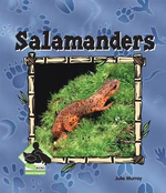 Salamanders eBook : Salamanders - Julie Murray