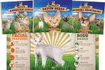 Cat Craze Set 2 : Super Sandcastle: Cat Craze - Katherine Hengel