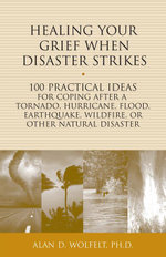 Healing Your Grief When Disaster Strikes : 100 Practical Ideas for Coping After a Tornado, Hurricane, Flood, Earthquake, Wildfire, or Other Natural Dis - Alan D. Wolfelt