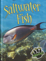 Saltwater Fish : Eye to Eye with Animals - Tom Greve