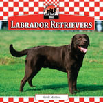 Labrador Retrievers - Heidi Mathea