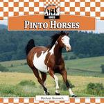 Pinto Horses - BreAnn Rumsch