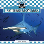 Hammerhead Sharks - Heidi Mathea