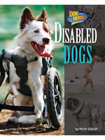 Disabled Dogs - Meish Goldish