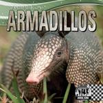 Armadillos : Animal Icons - Sheila Griffin Llanas