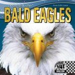 Bald Eagles : Animal Icons - Sheila Griffin Llanas