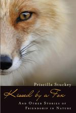 Kissed by a Fox : And Other Stories of Friendship in Nature - Priscilla Stuckey