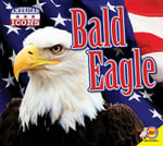 Bald Eagle with Code : American Icons - Kaite Goldsworthy