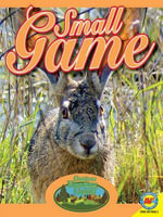 Small Game : Outdoor Hunting Guide - Janet Gurtler