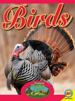 Birds with Code : Outdoor Hunting Guide - Pamela McDowell