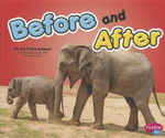Before and After : Brushes with Greatness - Joy Frisch-Schmoll