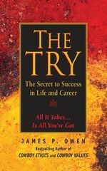The Try : The Secret to Success in Life and Career - James P Owen