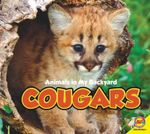 Cougars : Animals in My Backyard - Aaron Carr