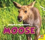 Moose : Animals in My Backyard - Aaron Carr