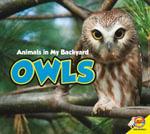 Owls : Animals in My Backyard - Aaron Carr