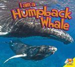Humpback Whale : I Am (Av2 Weigl) - Aaron Carr