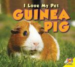Guinea Pig - Aaron Carr