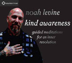 Kind Awareness : Guided Meditations for an Inner Revolution - Noah Levine