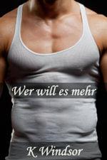 Wer will es mehr? : Eine erotische Gay Fantasie - K Windsor