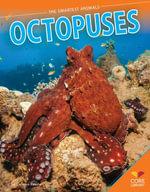 Octopuses - Colleen Kessler