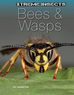 Bees & Wasps : Xtreme Insects - S L Hamilton