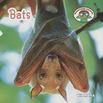 Bats : Backyard Safari - Wil Mara