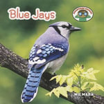 Blue Jays : Backyard Safari - Wil Mara