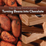 Turning Beans Into Chocolate - Herald McKinley