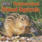 Thirteen-Lined Ground Squirrels : Little Bits: In Winter, Where Do They Go? - J Clark Sawyer
