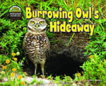 Burrowing Owl's Hideaway - Dee Phillips