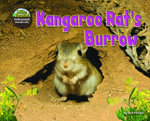 Kangaroo Rat's Burrow - Dee Phillips