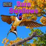 Barn Swallows - J. Clark Sawyer