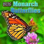 Monarch Butterflies - Joyce Markovics