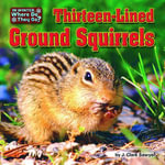 Thirteen-Lined Ground Squirrels - J. Clark Sawyer
