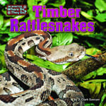 Timber Rattlesnakes - J. Clark Sawyer