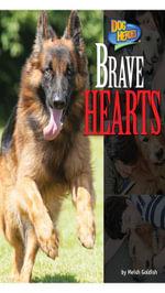 Brave Hearts - Meish Goldish