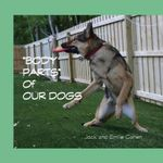 Body Parts of Our Dogs - Jack Cohen