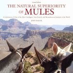 The Natural Superiority of Mules : A Celebration of One of the Most Intelligent, Sure-Footed, and Misunderstood Animals in the World, Second Edition - John Hauer