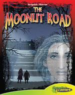 Moonlit Road - Vincent Goodwin