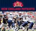 New England Patriots - Marcia Zappa
