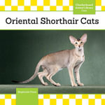 Oriental Shorthair Cats - Stephanie Finne