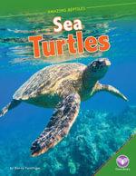 Sea Turtles - Nancy Furstinger